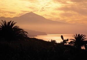 Новый год на острове Тенерифе II